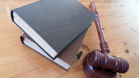 Суд Петербурга начал рассмотрение дела женщины, укравшей двухлетнего ребенка в Петродворце