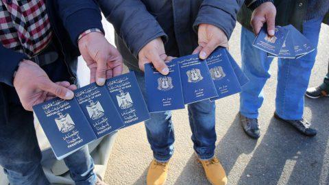 В Петербурге 20 мигрантов работали на овощебазе без документов