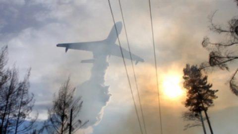 Пострадавшим от пожаров регионам Сибири выделят 143 миллиона рублей