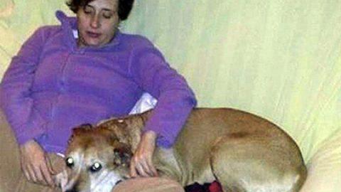 Хозяйка усыпленной из-за Эболы собаки проиграла в суде властям Испании