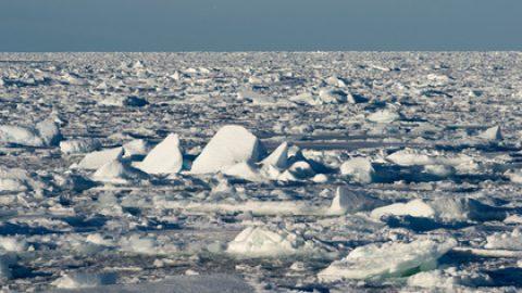 Девять российских туристов на снегоходах провалились под лед на Шпицбергене