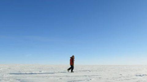 Российский фильм про Антарктиду получил Гран-при фестиваля научного кино в Чехии