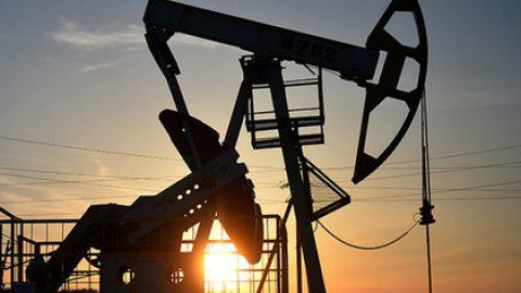 За год цена российской нефти Urals выросла в полтора раза