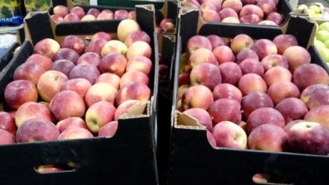 В Петербурге уничтожили три тонны томатов, яблок и пекинской капусты