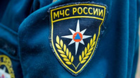 В лесу под Петербургом больше 30 человек три часа искали двух школьников, отправившихся в экспедицию к норе бобра