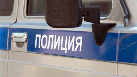 В двух районах Петербурга полиция обнаружила незаконно размещенные торговые точки