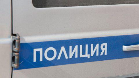 Петербуржец при помощи пистолета и дубинки боролся с подростками на детской площадке