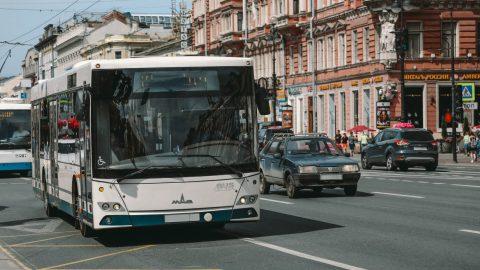 В Петербурге хотят выделить 20 миллионов на остановки