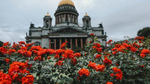 Дмитриева: Музейные объекты Исаакия могут покинуть собор только по спецразрешению Минкульта