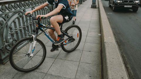 В Петербурге появится 40 км современных велодорожек