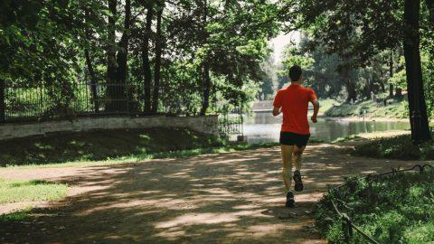 Слоганом Петербургского благотворительного марафон станет «Айда Пушкин!»