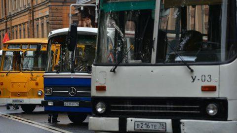 В День города по Петербургу будут курсировать ночные автобусы