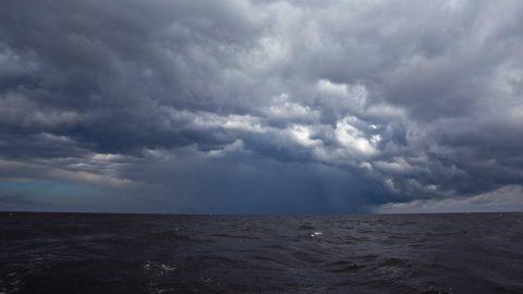 В Ленобласти неделя начнется со шторма и грозы