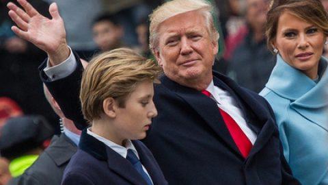 Трамп признался в любви к своей работе
