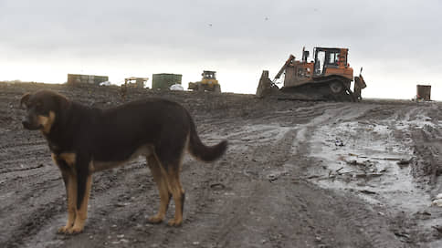 В отходах наведут германский порядок // Зарубежные инвесторы могут заняться переработкой мусора в Ленобласти